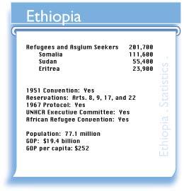 Refworld | World Refugee Survey 2008 - Ethiopia